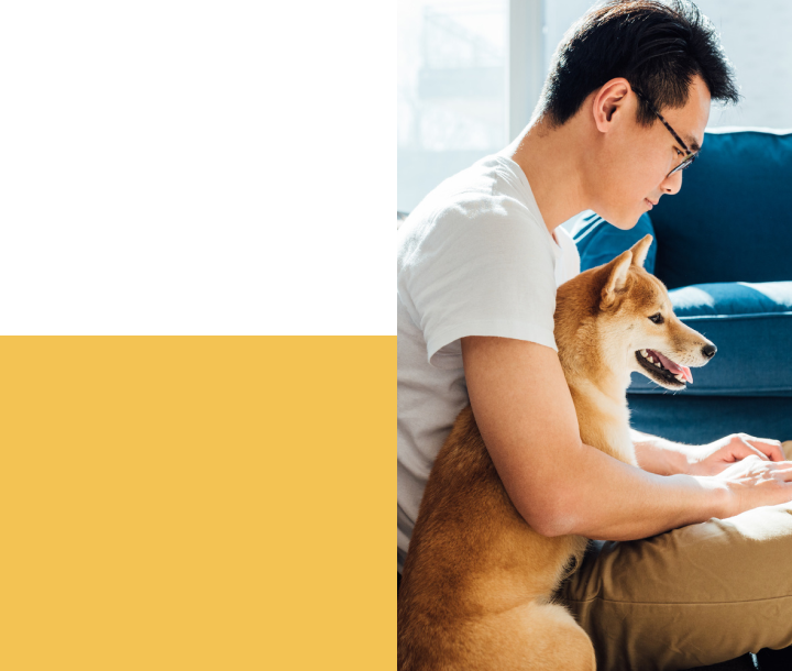 man working at the computer with a dog